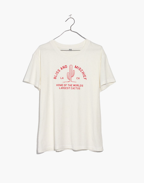Bliss & Mischief® Bliss Home of the World's Largest Cactus Destroyed Tee in vintage white image 4