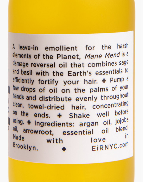 Eir NYC® Mane Mend Hair Oil in one color image 2
