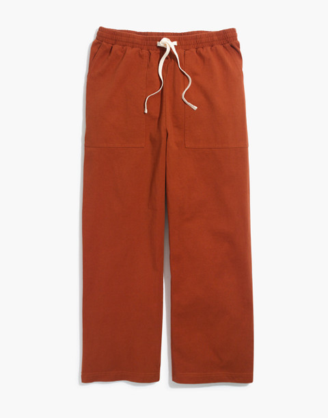 Drawstring Knit Pants in burnt clay image 1