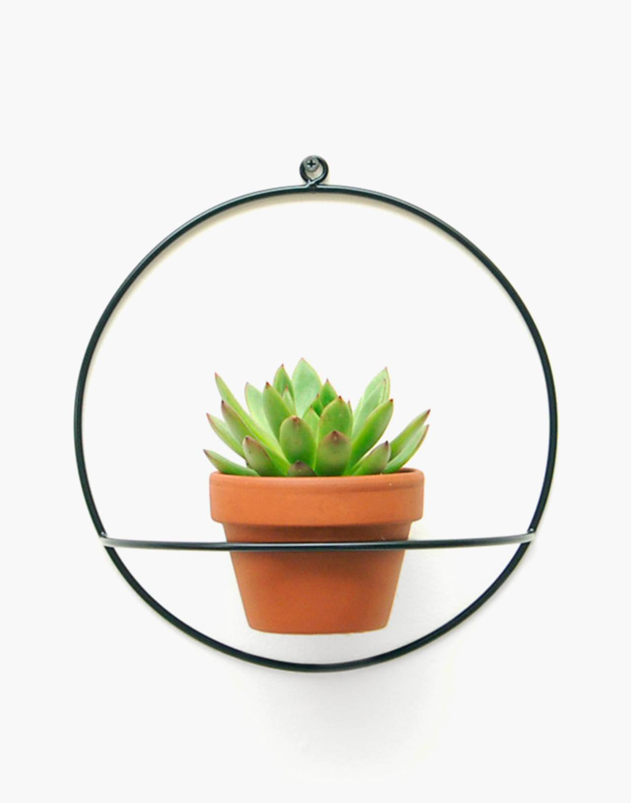 NEWMADE LA Circle Wall Planter in black image 1