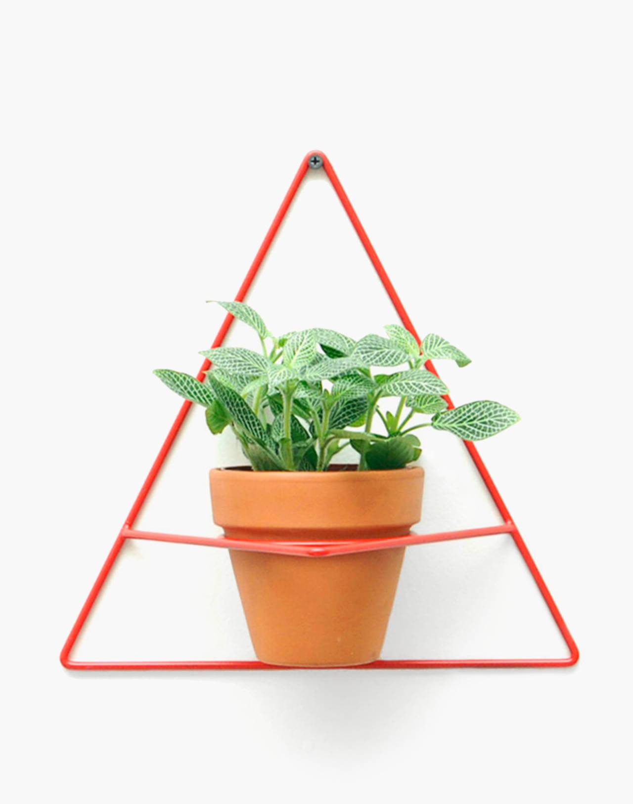 NEWMADE LA Triangle Wall Planter in red image 1